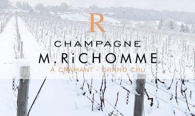 champagne richomme vignes sous la neige